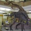 Tokyo Naturhistoriska museum