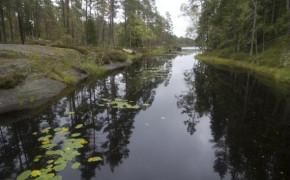 Tresticklans nationalpark