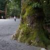 Ise-Shima nationalpark
