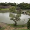 Kungliga trädgården Naha Okinawa