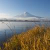 Kawaguchiko sjön (fujis fem sjöar)