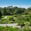 Golden Gate Botanical Garden