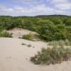 Zuid Kennemerland nationalpark