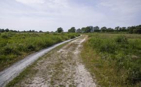 Drentsche Aa nationalpark