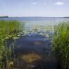 De Weerribben nationalpark