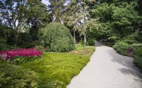 Hannover botaniska trädgård