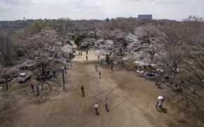 Ikuta Ryokuchi parken