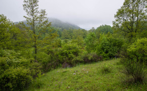 Nationalparken Appennino Lucano