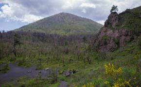 Vesuvio nationalpark