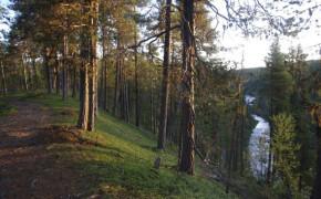 Muddus nationalpark