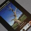 Skyddsvärda trädmiljöer i Skåne