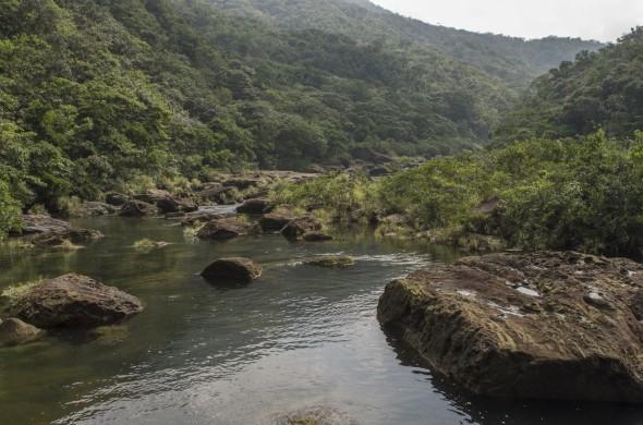 Higuchi_keiouniversity_PB_okinawa_09102013_IMGP9722