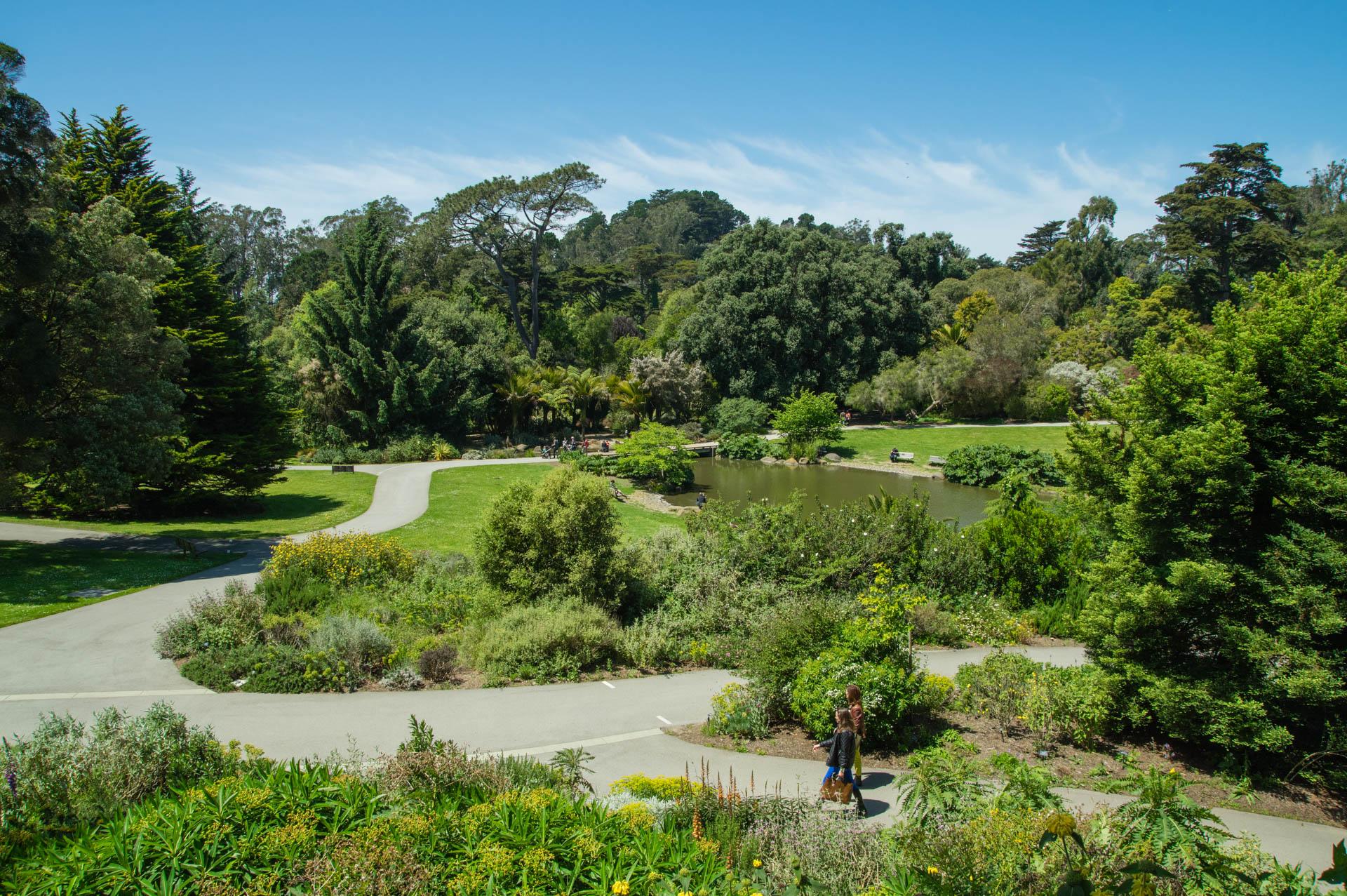 Golden Gate Botanical Garden Ekid