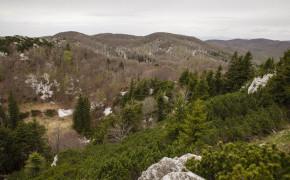 Risnjak nationalpark
