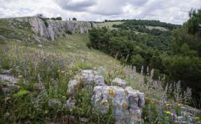 Citulo i dell´Alta Murgia nationalpark