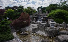 Freiburgs japanska trädgård